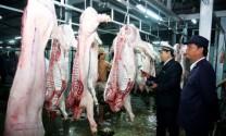 Quản lý giết mổ gia súc, gia cầm: Nhu cầu tăng, nỗi lo tăng
