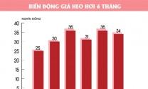 Cách mạng chăn nuôi Việt Nam: Cơ hội và thách thức