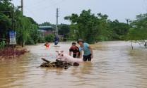 Phòng chống dịch bệnh động vật mùa mưa lũ