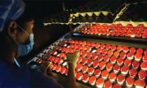 Trung Quốc: Hiện đại hóa ngành trứng