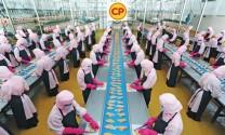 """Công ty C.P.: Kỳ diệu chuỗi giá trị """"Feed - Farm - Food"""""""