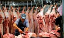 Giải pháp ổn định thị trường thịt heo