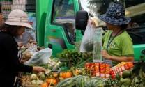 Người thành thị 'săn tìm' thực phẩm sạch