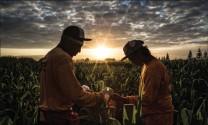 Nông nghiệp toàn cầu giữa ngã rẽ quan trọng