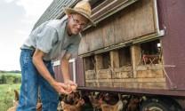 Xu thế phát triển chăn nuôi thế giới