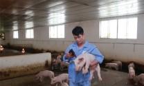 """Sản xuất vaccine: """"Cuộc cách mạng"""" của ngành thú y"""