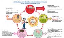 BioKon - Giải pháp an toàn sinh học cho trại heo phòng ASF và lở mồm long móng