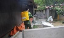 Kiểm soát dịch bệnh: Phát triển chăn nuôi chuyên nghiệp, tuân thủ an toàn sinh học