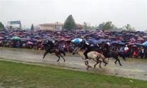 Trên 60 nài ngựa tham gia đua 'Vó ngựa cao nguyên trắng 2019'