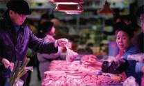 Nguồn cung thịt heo đang cạn?