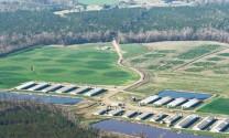 Mỹ chặn ASF bằng hàng rào an toàn sinh học