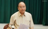 Thủ tướng chỉ đạo tập trung dập dịch ASF