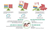 Tối ưu hóa hiệu suất chăn nuôi mùa nóng