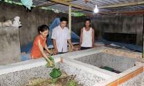 Sơn La: Mô hình nuôi dế thương phẩm ở Mường Khoa