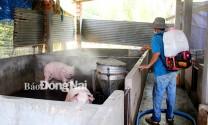 Đồng Nai: Ngăn chặn dịch tả heo châu Phi xâm nhập trang trại lớn