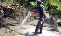 Vĩnh Long: Mùa dịch bệnh và ý thức của người chăn nuôi
