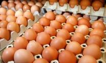 Cung vượt cầu, trứng gia cầm rớt giá mạnh