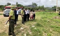 Tập đoàn TH đề xuất đầu tư dự án chăn nuôi 20 nghìn con bò sữa tại Quảng Ninh
