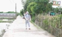Thái Bình: Khẩn trương đối phó với dịch cúm A/H5N6 trên đàn gia cầm