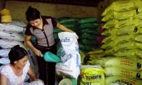 Sản xuất - kinh doanh thức ăn chăn nuôi: Lao đao vì dịch bệnh