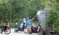 Bình Thuận: Cảnh báo bùng phát dịch tả lợn trên diện rộng