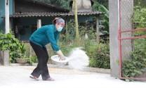 Phú Thọ: Khuyến nghị không tái đàn ồ ạt sau dịch