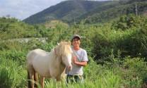 """""""Ốc đảo"""" ngựa bạch giữa cao nguyên"""