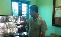 An toàn sinh học: Biện pháp tối ưu cho chăn nuôi lợn