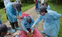 Tập huấn cách nhận biết dịch bệnh trên động vật hoang dã