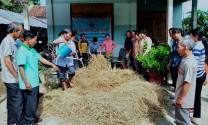 Đồng Xuân (Phú Yên): Tập huấn kỹ thuật chế biến thức ăn cho bò