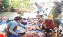 Tiền Giang: Dịch tả lợn Châu Phi chưa giảm, nhưng giá lợn gia tăng
