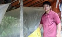 Lạng Sơn: Nuôi ruồi lính đen, hướng đi triển vọng tại Gia Cát