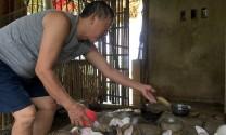 Quảng Bình: Giúp nhau thoát nghèo từ mô hình nuôi thỏ
