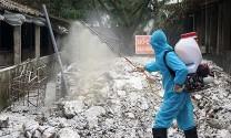 Hà Nội: Cấp hơn 41.000 lít hóa chất vệ sinh, tiêu độc môi trường phòng, chống dịch bệnh gia súc, gia cầm