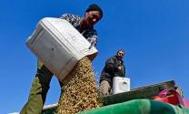Cuộc chiến nông sản toàn cầu