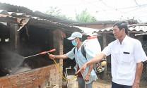 Ninh Thuận: Xuất hiện thêm một ổ dịch tả lợn Châu Phi tại xã Bắc Sơn