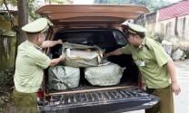 Thu giữ 400 kg nầm lợn nhập lậu không đảm bảo vệ sinh thực phẩm