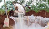 Xử phạt nếu chậm hỗ trợ hộ chăn nuôi thiệt hại do dịch tả lợn châu Phi