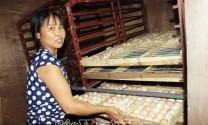 Hưng Yên: Trứng, con giống gia cầm tăng giá mạnh