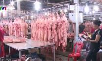 Ổn định giá thịt lợn từ nay đến Tết Nguyên đán Canh Tý 2020