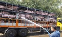 Cấm xuất tiểu ngạch sang Trung Quốc, giá heo trong nước 'hạ nhiệt'