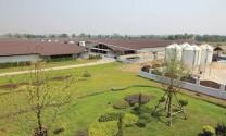 """Khách sạn"" heo Wichianburi"
