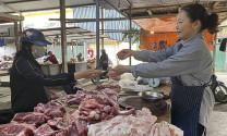 Nghệ An: Thiếu hụt nguồn cung lợn thịt, dân dè dặt tái đàn