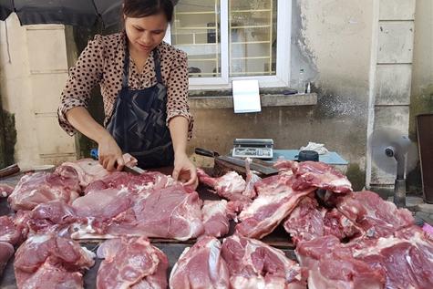 Chị Nguyễn Thị Tuyết cho biết: Giá lợn hơi tại các chợ tăng do khan hiếm nguồn cung và thông tin dịch tả lợn Châu Phi. Ảnh: Kh.V
