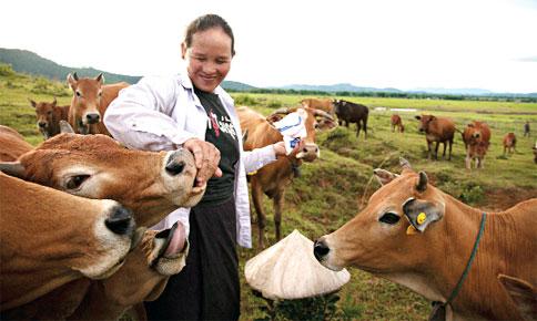 quản lý chăn nuôi bằng công nghệ